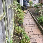 Garden clearance north finchley n12 london 6