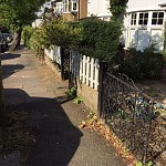 Gardening services finchley n3 north london 1