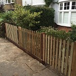Gardening services finchley n3 north london 2
