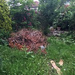 Gardening services muswell hill n10 london 02