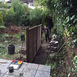 Gardening services muswell hill n10 london 05