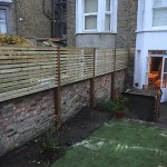 Wall trellis acton w3 london 02